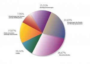Ursachen der Berufsunfähigkeit Quelle: MORGEN & MORGEN, Stand April 2013